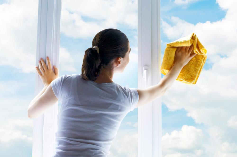lavare vetri e finestre
