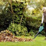togliere le foglie dal giardino
